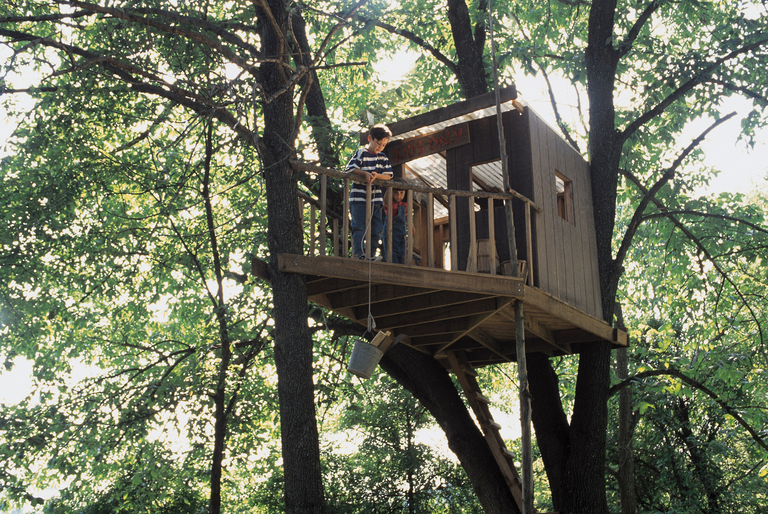 treehouse building tips1